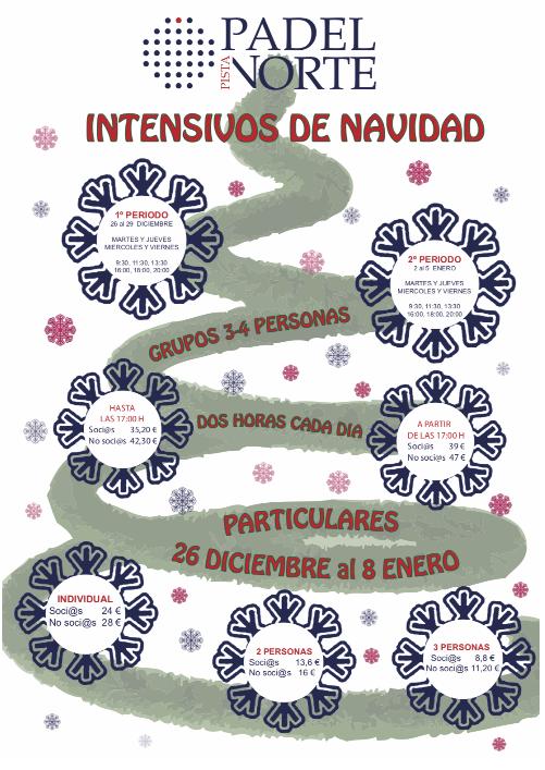 Cursos intensivos de navidad